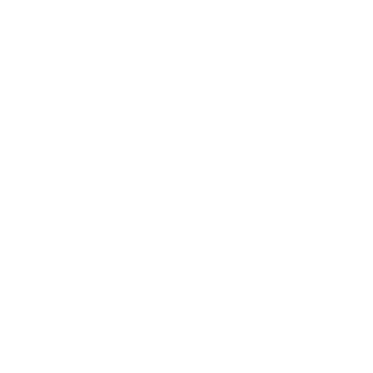 To the Regiment!